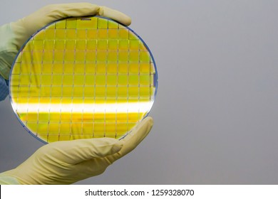 Silicon Wafer is held in the hands by gloves - A wafer is a thin slice of semiconductor material, such as a crystalline silicon, used in electronics for the fabrication of integrated circuits.