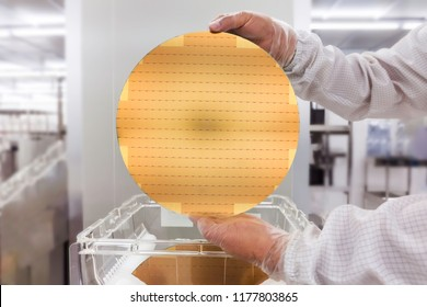 Silicon wafers prepared for chip production, showing a wafer cleaning , blurred background