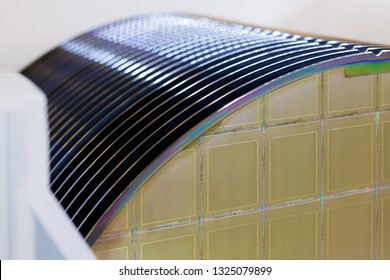 Silicon Wafers in white plastic holder box on a table- A wafer is a thin slice of semiconductor material, such as a crystalline silicon, used in electronics for the fabrication of integrated circuits.