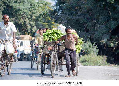 SILIGURI, INDIA DECEMBER 5, 2016: local pulling a three-wheeled cart laden with bananas from the wholesale market