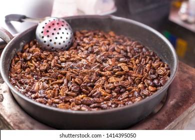 Silkworm Larvae or Beondegi. steamed silkworm chrysalis, Pupa