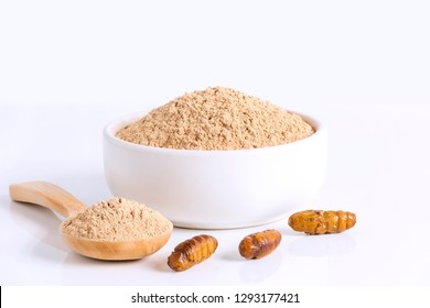 Silkworm Pupae (Bombyx Mori) powder. Insects flour for eating as food items made of cooked insect meat in bowl and spoon on white background is good source of protein edible for entomophagy concept.
