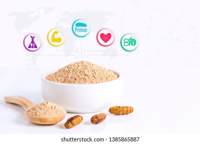 Silkworm Pupae (Bombyx Mori) powder items made of cooked insect meat for eating as food edible and media icon nutrition on white background, it is good source of protein. Entomophagy concept.