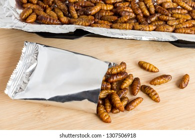 Silkworm Pupae insects for eating as food. Chrysalis silkworm  deep-fried or baked crispy snack in a foil wrap ready to eat and in baking tray on wood background, it is good source of protein edible.