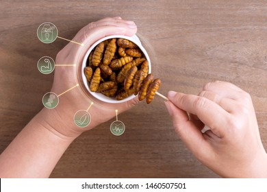 Silkworm Pupae insects for eating as food in disposable cup with icon media symbol on wood background. Chrysalis silkworm snack fried for take out, it is good source of protein edible. Entomophagy.