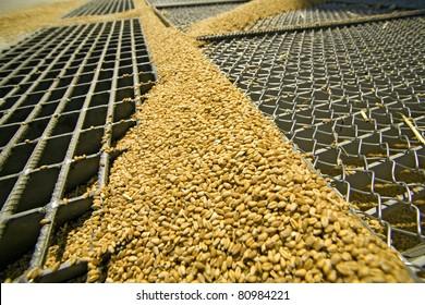 Silo for  wheat, entrance through silo grid