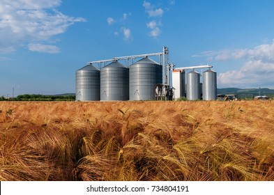 Silos in a barley field. Storage of the crop