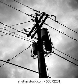 Silouettes of birds perched on utility wires. Kansas, United States.