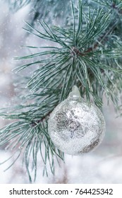 silver ball hanging on pine branches in the frost