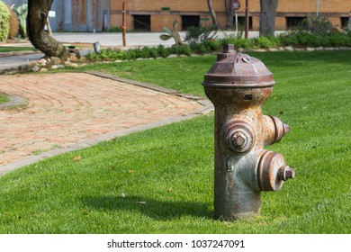silver colored fire hydrant surrounded by grass
