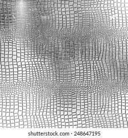 Silver crocodile leather texture