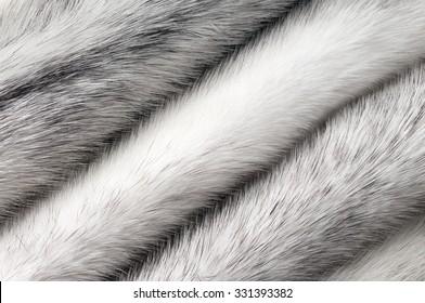 Silver cross mink fur texture macro background