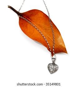 silver diamond heart pendant on autumn leaf