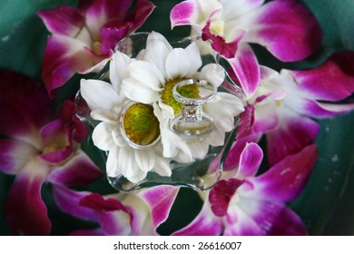 Silver and diamond wedding rings set amongst flowers.