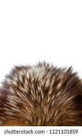 Silver fox fur. Useful as texture or background.