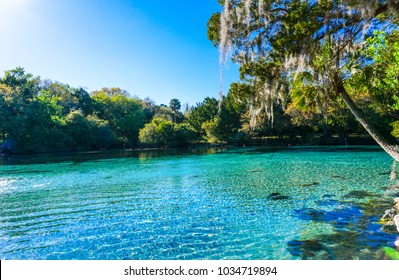 Silver Glen Springs Recreation Area in Florida