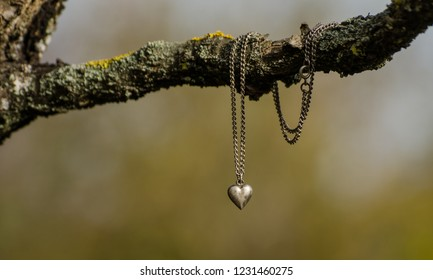 Silver heart necklace on a branch in the garden - autumn scene from Europe with antiquity