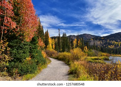Silver Lake by Solitude and Brighton Ski resort in Big Cottonwood Canyon. Panoramic Views from the hiking and boardwalk trails of the surrounding mountains, aspen and pine trees in Utah Wasatch USA