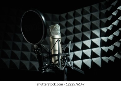 silver professional microphone in the recording studio