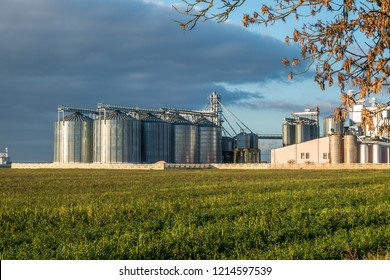 silver silos on agro manufacturing plant for processing drying cleaning and storage of agricultural products, flour, cereals and grain
