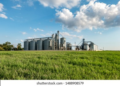 silver silos on agro manufacturing plant for processing drying cleaning and storage of agricultural products, flour, cereals and grain. Granary elevator