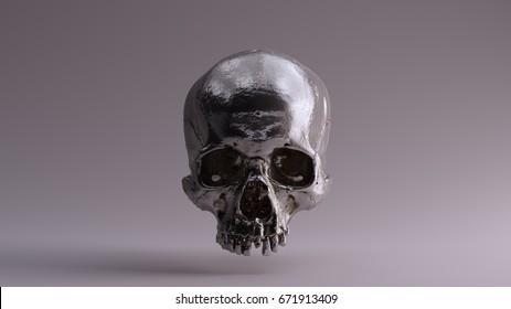 Silver Skull Front - skull scan SCSU VizLab thingiverse CC Attribution