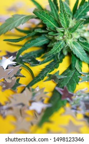 Silvery holiday stars and green leaves of wild cannabis hemp lie on a bright yellow background. Psychotropic substances and medicine. Party and relaxation. Shallow depth of field. Daylight