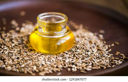 Silybum marianum oil milk thistle, herbal milk thistle oil and dried seeds, healthy liver protective medicinal plant oil