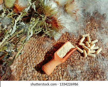 Silymarin (milk thistle or Silybum marianum) pills powder & flowers. Alternative medicine concept milk thistle liver detox pills on table. Silybum thistle flowers (silymarin) for liver detoxification
