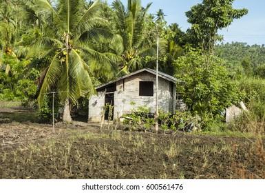 Simple asian nipa hut in the farm
