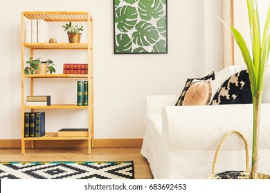 Simple bookshelf and white minimalist sofa in contemporary room