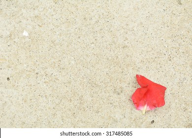 Simple concrete painted floor with one red rose petals background and texture