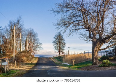 Simple Country Road
