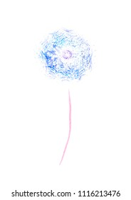 simple dandelion watercolor picture on white background