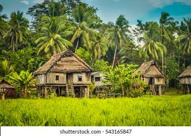 Simple houses made of straw, wood and bamboo surrounded by greenery in Palembe, Sepik river in Papua New Guinea.