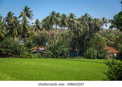 Simple Indian dwellings in South Goa. India.
