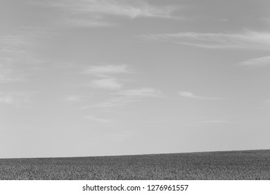 Simple landscape in black and white