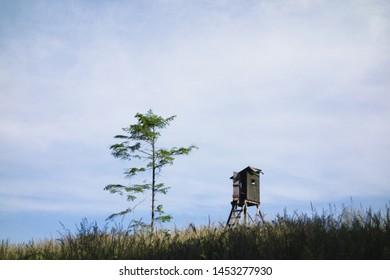 Simple minimalist landscape scenery with wooden hide (tower), grass field and tree. Taken in Prasiva hora, Beskydy, Silesian region, Czech repulic, Europe.