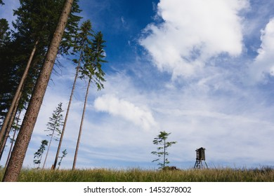 Simple minimalist landscape scenery with wooden hide (tower), grass field, dark blue sky and trees. Taken in Prasiva hora, Beskydy, Silesian region, Czech repulic, Europe.