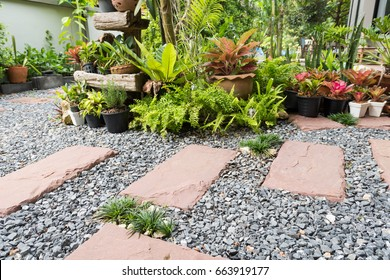 Simple pathway in home garden landscape