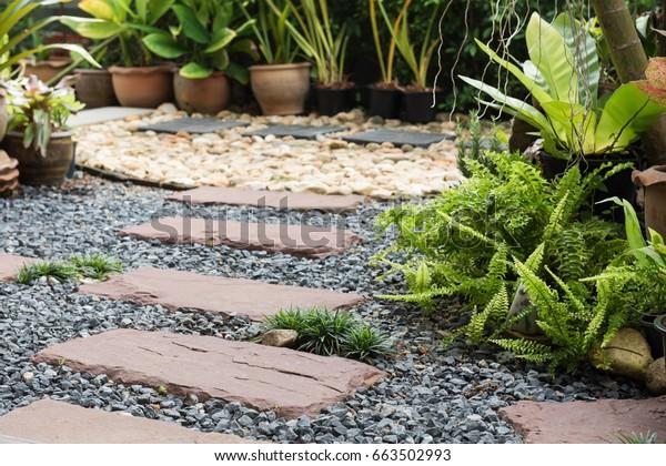 Einfache Allee in der heimischen Gartenlandschaft