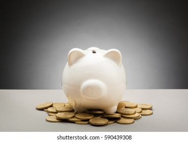Simple Piggy Bank - With Expressions - Blank with Coins