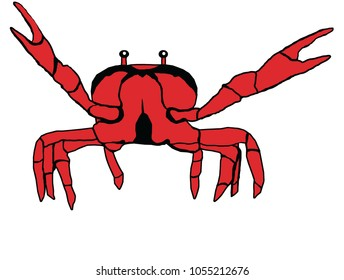 Simple red crab illustration with claws raised up isolated on white.