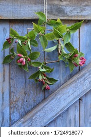 A simple spring time wreath that can be used for wedding or party outdoor decorations . Spring blossom hanging on a blue painted barn door
