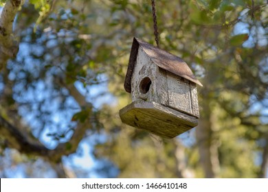 A simple wooden bird boxes hanging from branches of a tree.