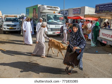 Sinaw, Oman, November 30th, 2017: bedhouin woman pulling a calf she had purchased at a market