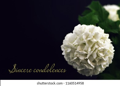 Sincere condolences. Condolence card