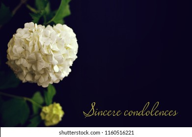 Sincere condolences text written on condolence card