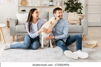 Sincere Emotions. Young loving family playing with dog sitting on the floor, labrador sniffing his owner's face