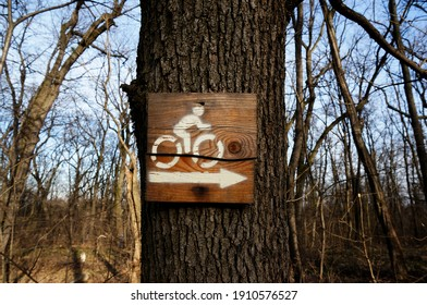 Sing in woods sing in forest znak u šumi